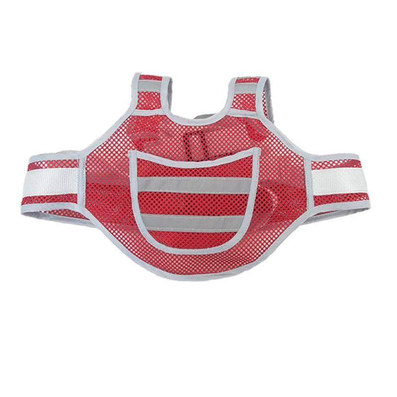 Baby Harness - Net - Red
